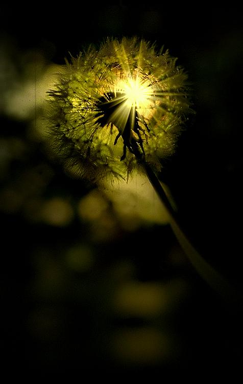 Light Breaker