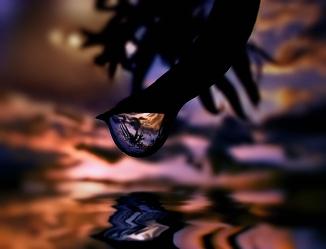 queen of drops (1)