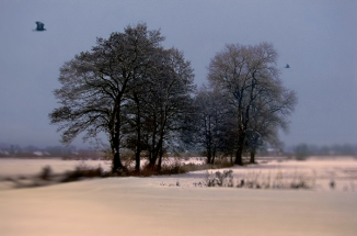 Poland Winter  (3)