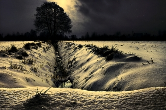 Winter Lonelyness  (7)