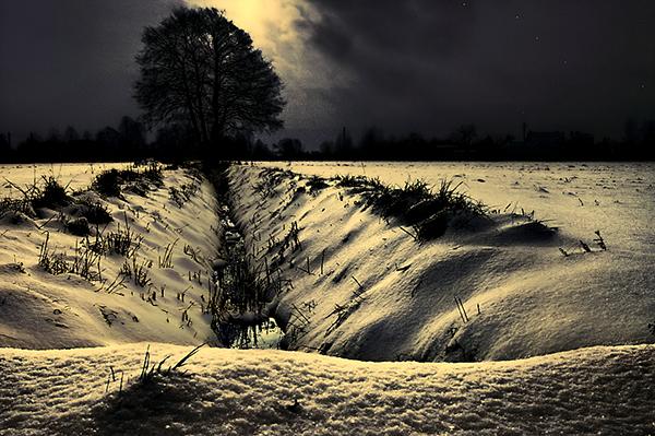 Winter Lonelyness  (7)