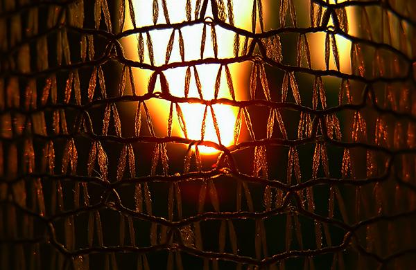 fragile light (1)