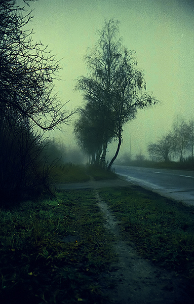 Polish Landscape Mood (18)
