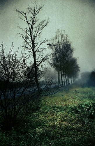 Polish Landscape Mood (8)
