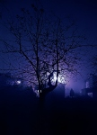 One mysterious night (2)