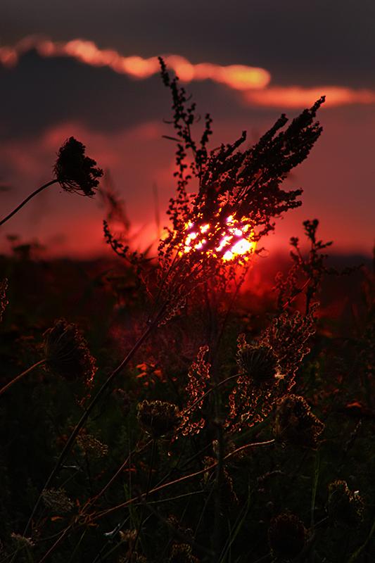 Last sun feelings