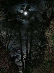 mortui-nocte-2